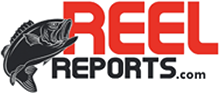 reel reports